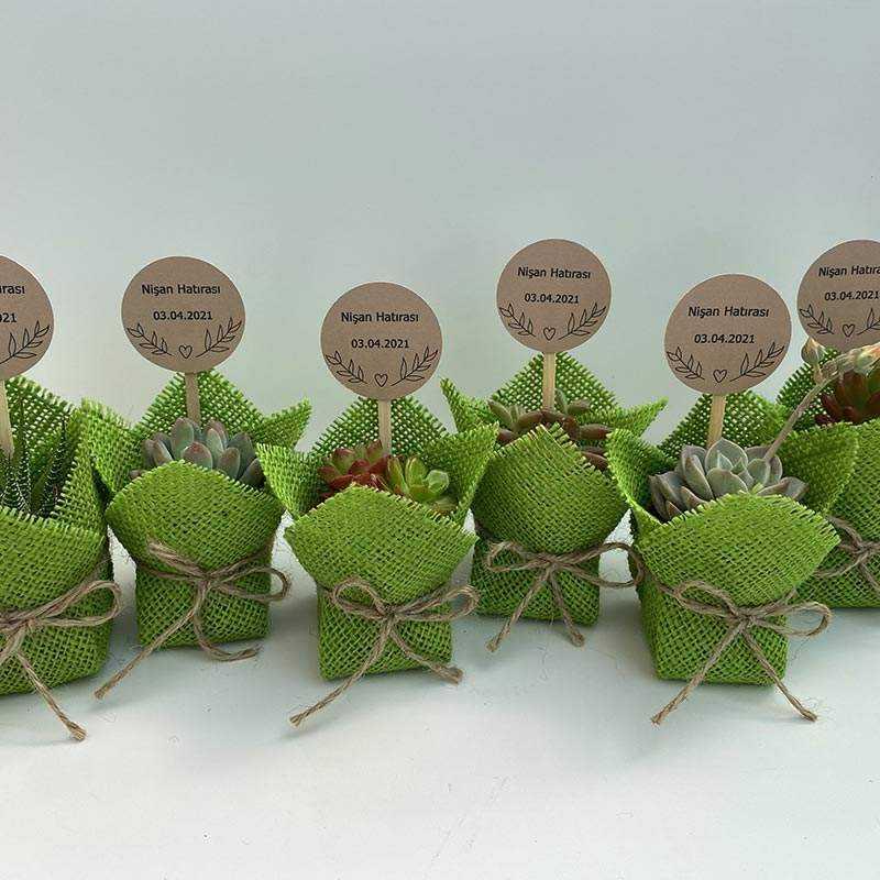 Fıstık Yeşili Renkli Jut Kumaş Süslemeli Sukulent